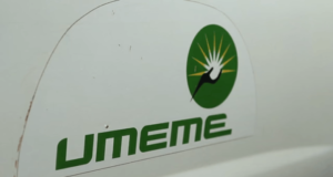 Electricity Powerhouse Umeme Profits Plummets - Executive Director Blames Election